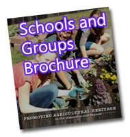 School and Programs Informational PDF Download